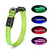 PcEoTllar LED Hundehalsband Wiederaufladbare USB 100% Wasserdichtes Leuchtendes Hunde Halsband Einstellbare für Kleine Mittlere Große Hunde - Grün - L