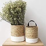 æ— Hängepflanzkorb aus Seegras, gewebter Wandkorb mit Griff, Wandkorb, Aufbewahrungskorb zum Aufhängen, Aufbewahrungskörbe für Blumen, Pflanzen, Kleidung, 13 x 17 cm, 2 Stück