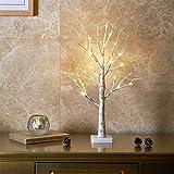 Aehma LED Baum Birke Fenster Tisch Deko Beleuchtung für Weihnachten künstlich Lichterbaum Lichterzweige Warmweiß Batteriebetrieb 60cm hoch
