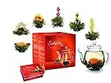 Creano Teeblumen Mix - Geschenkset 'ErblühTee' Frühjahrslese mit Glaskanne Weißer Tee (in 6 Sorten)