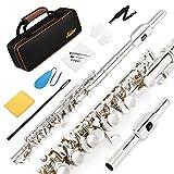 Eastar EPC-2S versilbert Piccoloflöte C Key mit Hartschalenetui, Grifftabelle, Putzstock, Tuch, Tupfer und Handschuhen