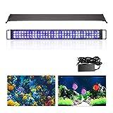 wolketon LED Aquarium Beleuchtung 48W Universal Aquarium Lampe LED Pflanze mit Verstellbarer Halterung für Süßwasser-Aquarien…