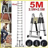 5M Teleskopleiter ausziehbare Leiter Aluleiter Ausziehleiter Anlegeleiter 16 Sprossen Mehrzweckleiter 150kg Belastbarkeit Sicherheitsverriegelung Leiter (2,5 + 2,5M)