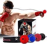 Champs Boxing Reflex Ball Kampfgeschwindigkeit mit exklusivem Trainingsvideo. Erlernen Sie grundlegende Kampfsportfähigkeiten, verlieren Sie Gewicht und verbessern Sie die Reaktionszeit (4-Set)