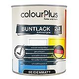 colourPlus® 2in1 Buntlack (750ml, RAL 7016 Anthrazitgrau) seidenmatter Acryllack - Lack für Kinderspielzeug - Farbe für Holz - Holzfarbe Innen - Made in Germany