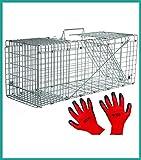 Praknu Marderfalle Lebendfalle 79cm Groß - Effektiv - Sicher inkl. Handschuhe - für Katzen, Fuchs, Marder