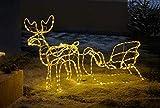 """LED Deko """"Rentier mit Schlitten"""", 177 cm lang, Weihnachtsbeleuchtung für Draussen, Leuchtfigur"""