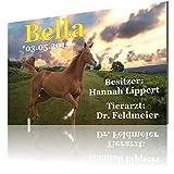 SCHILDER HIMMEL Personalisiertes Pferdeschild Boxenschild mit Wunschbild und Wunschtext 21 x 15 cm