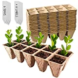Green Thumbz Anzuchttöpfe Biologisch abbaubar, Diese Setzlinge Gemüsepflanzen sind perfekt für den Garten, Gemüsegarten und Gewächshäuser, Setzlinge Kasten (6er-Set)
