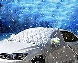 iiSPORT Windschutzscheibenabdeckung, Premium Frontscheibe Schnee Frost Sonnenschutz Abdeckung Eisschutzfolie für Winter+Sommer, Extra Groß 250cm x 140cm passt für die meisten SUVs