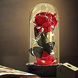 Die Schöne und das Biest Rose Geschenk Kit, rote Seide Rose und LED-Licht mit gefallenen Blütenblättern Geschenke für Hauptdekor Geburtstag, Hochzeit, Valentinstag, Muttertag, Jubiläum, Weihnachtstag