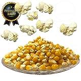 Premium Butterfly Popcorn Mais 3 x 250g 1:50 Popvolumen Profi Mushroom Popcorn Mais geeignet für Backofen, Cretors Popcornmaschine und Mikrowellen