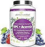 OPC Traubenkernextrakt Kapseln hochdosiert, vegan, 1050mg reines OPC + 75mg natürliches Vitamin C aus Acerola, 120 Kapseln