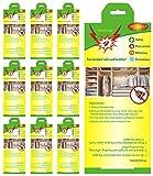 Fullsexy 10 Stück Mottenschutz Kleidermottenfalle Insektizidfreie Pheromonfalle Erstklassige Mottenfalle für den Kleiderschrank MEHRWEG