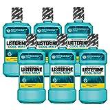 Listerine Cool Mint Mundspülung, Mundwasser mit intensivem Minzgeschmack, antibakteriell für gesundes Zahnfleisch (6 x 600 ml)