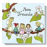 Freundebuch I Freundschaftsbuch vorgefertigte Seiten zum Ausfüllen von Outi Kaden, Elfen für Mädchen, Poesiealbum Grundschule, Kita, Schule, Grätz Verlag