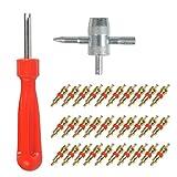 YANSHON 32-Teilig Reifenventilentferner Reifen ventileinsatz (Einkopf-Ventil Entferner+ 4 in1 Reparatur-Werkzeug) für Auto,Motorrad,Fahrrad
