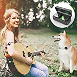 Petfon GPS-Tracker für Hunde und Haustiere, keine monatlichen Gebühren, Echtzeit-Tracking-Gerät, Anti-Verlust-Monitor, Smart Finder(Only for Dog)