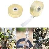 Ancirs Veredelungsband, biologisch abbaubar, Feuchtigkeitssperre, dehnbar, transparent, Floristikfolie für Obstbaumpflanzen Beige, 2 cm breit.