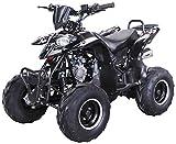 Kinder Quad S-5 Polaris Style 125 cc Motor Miniquad 125 ccm Razer (Schwarz)
