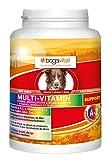 bogavital Multi Vitamin Support Hund, 1er Pack (1 x 180 gr)
