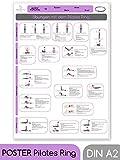 beneyu ® Pilates Poster für Pilates Ring/Oberschenkeltrainer in Deutscht, DIN A2 (60x42cm) Klimaneutrale Produktion - (auf A4 gefalzt) (gefalten, DIN A2)