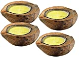 infactory Mückenkerze: Anti-Mücken-Kerzen in Kokosnuss-Schale (4er Set) (Insektenschutz Kerze)