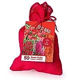 Zwiebelmix 'Rot' im Jutesack - 50 Stück Blumenzwiebeln, Direkt von holländischem Boden