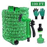 PECHTY Flexibler Gartenschlauch,100 FT 30m FlexiSchlauch Flexibel Wasserschlauch Flexi Wonder Dehnbarer Schlauch Flexi Gartenschlauch mit 8 Funktion Garten Handbrause und Garten Handschuhe (Grün)