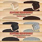 Kettelservice-Metzker® Stufenmatten Kleinformat für Raumspartreppen/Wendeltreppen 55x15x3,5cm inkl. Fleckentferner, Beige 15 Stück