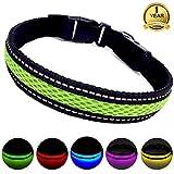 MASBRILL Leuchthalsband für Hunde aufladbar LED hundehalsband Blinkende Lichter mit USB verstellbar 3 Modells(M, Grün)
