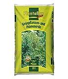 PLANTAFLOR Grünpflanzen- & Palmen-Erde, 10 Liter