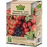 Florissa Natürlich 58677 Tomaten-und Beeren Kalium für optimale Fruchtbildung   schnellser Bio-Dünger durch ProtoPlus   biologisch GÄRTNERN Gütesiegel   haustierfreundlich, Braun, 2 kg