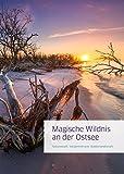 Magische Wildnis an der Ostsee: Nationalpark Vorpommersche Boddenlandschaft