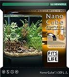 Dennerle Nano Cube Complete+ 30 Liter - Mini Aquarium mit Abgerundeter Frontscheibe - Komplett-Set