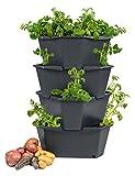 PAUL POTATO Starter Kartoffelturm - 4 Etagen von Gusta Garden - anthrazit/grau - stapelbar - Hochbeet/Pflanzgefäß für Balkon und Garten