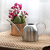 Baiwka Mini-Gießkanne mit Langer Düse, 500 ml, klein, Edelstahl, für drinnen und draußen, Zuhause, Büro, Garten, Topfpflanzen, Sukkulenten