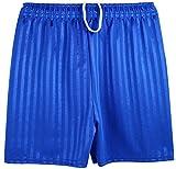 Kinder Unisex Sport- / Fußballshorts, Schattenstreifen Blau königsblau Large (7-8 Jahre)