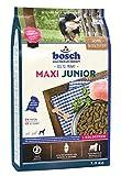 bosch HPC Maxi Junior | Hundetrockenfutter zur Aufzucht großer Rassen (ab 25 kg Endgewicht), 1 x 3 kg