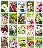 Edition Seidel Set 20 Geburtstagskarten Glückwunschkarten zum Geburtstag mit Umschlag. Grusskarte Geburtstagskarte Happy Birthday Mann Frau Karten Spruch Sprüche Billet