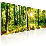 murando - Bilder Wald 225x90 cm Vlies Leinwandbild 5 TLG Kunstdruck modern Wandbilder XXL Wanddekoration Design Wand Bild - Waldlandschaft Natur Panorama Baum c-B-0184-b-m