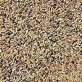 Supravit Kanarienfutter ohne Rübsen 5 kg - Futter für Kanarienvögel aller Arten wie Waterslager & Harzkanarien …