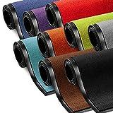 etm Schmutzfangmatte ColorLine | Türmatte in vielen Größen | Fußmatte für Innenbereich | Rutschfester Teppich für Flur, Haustür, Eingang, Eingangsbereich, Vorzimmer - Braun 60x180 cm
