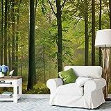 1art1 Wälder - Herbst-Wald 8-teilig Fototapete Poster-Tapete 368 x 254 cm