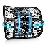 RenFox Lordosenstütze Mesh, Atmungsaktiv Rückenstütze mit Massage-Knoten, Lendenkissen Rückenkissen Taille Rückseite Lendenwirbelstütze für Auto, Bürostuhl, Büro und Arbeit (Black 2)