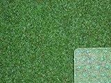 Ta-Bo Lifestyle Premium Kunstrasen Rasenteppich grün 10 mm mit Noppen 200 cm breit, 400x200 cm