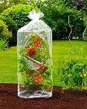 TempsL–Hüllen für Tomaten 130cm (2-teilig)