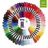 SOLEDI Stickgarn Embroidery Floss Multifarben Weicher Polyester Perfekt für Bracelets Stickerei Basteln Crafts Set Basteln Leisure Arts Kreuzstich, 8m, 6-fädig, Threads Nähgarne Häkeln (50 Farben)