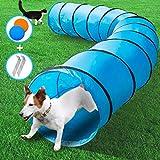 MASTERTOP Hundetunnel mit 2 Frisbee und Erdnägel, 525 x 60 cm Training Tunnel, Spieltunnel Agilitytunnel für Hunde und Katze mit Tragetasche (Blau)
