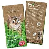PRETTY KITTY Premium Katzengras Samen, 25g Katzengras Saatmischung je Beutel für je ca. 10 Töpfe fertiges Katzengras (1x 25g Katzengrassamen)